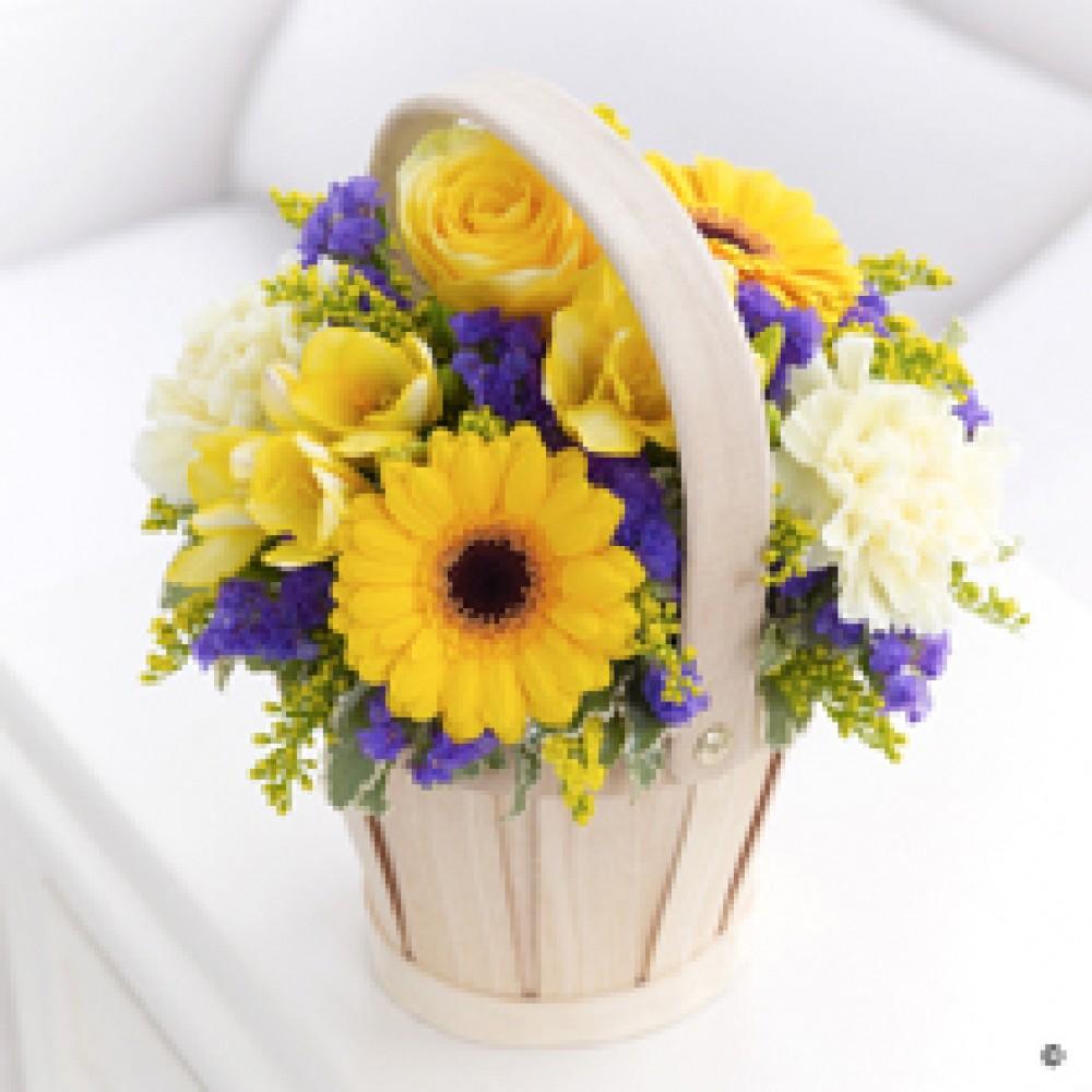 Spring Petit Basket
