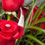Six of the Best Rose Bouquet